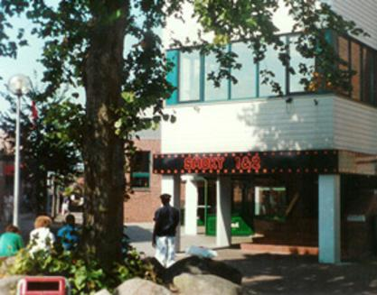 Smoky theaters stadskanaal 1981 heden for Deuren stadskanaal